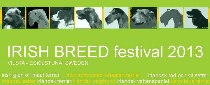 Lnk till Irish Breed Festival hemsida